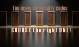Choosing right Commodity Code